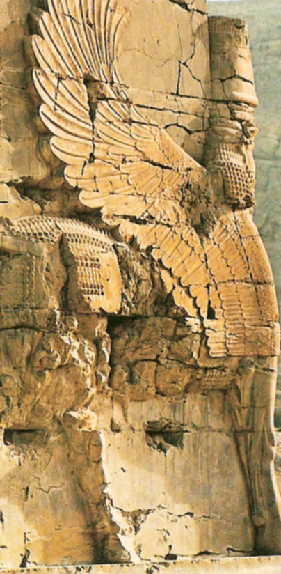 Bien-aimé Perse antique EU26